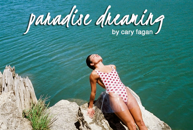 paradise dreaming, by cary fagan