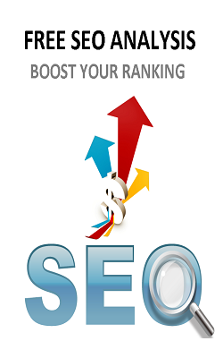 http://www.freesiteworth.com/seo-analyser/