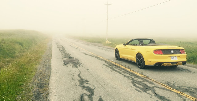 2015 Ford Mustang EcoBoost Convertible yellow
