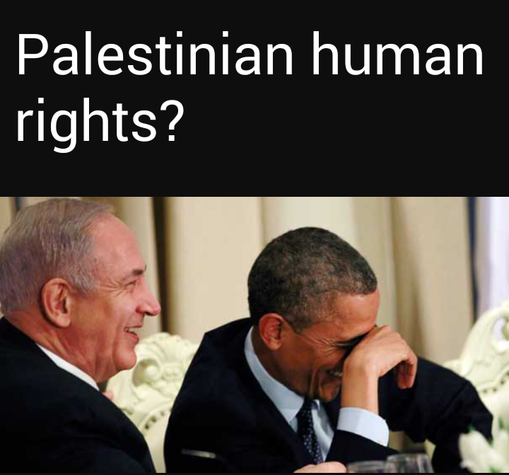 Palestinian human rights. click for album