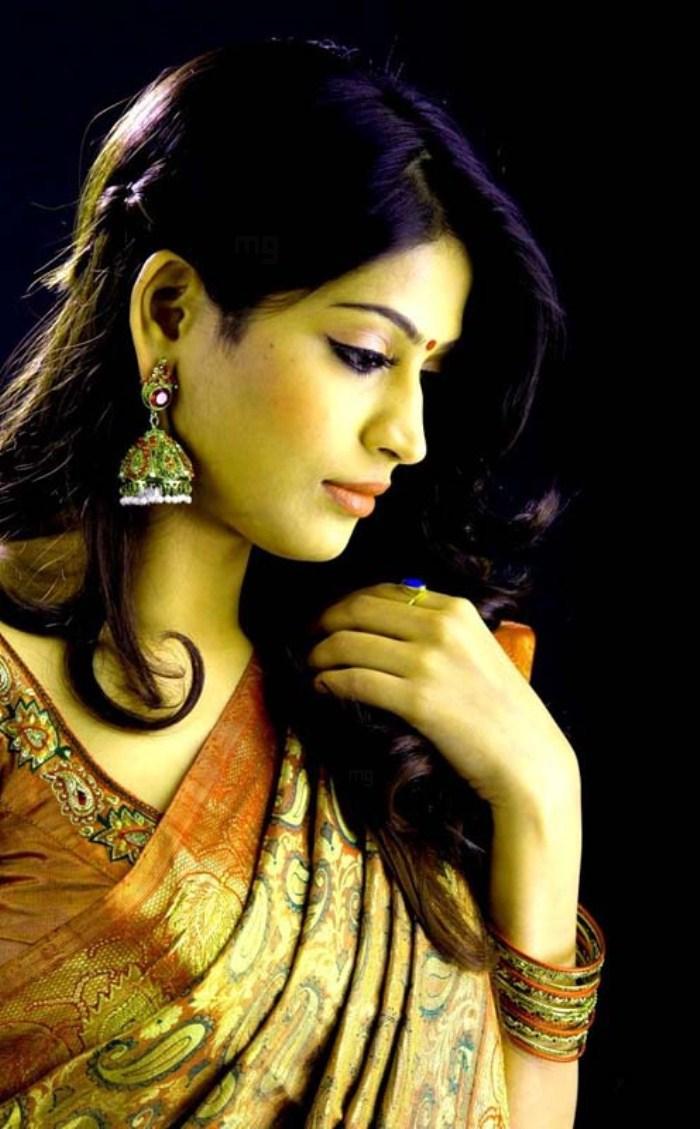 Actress Vijayalakshmi Saree