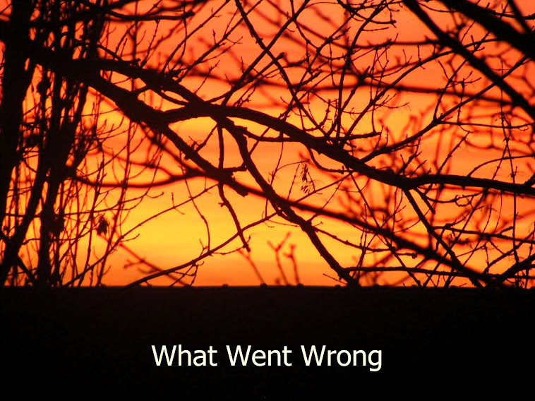 Front cover of What Went Wrong