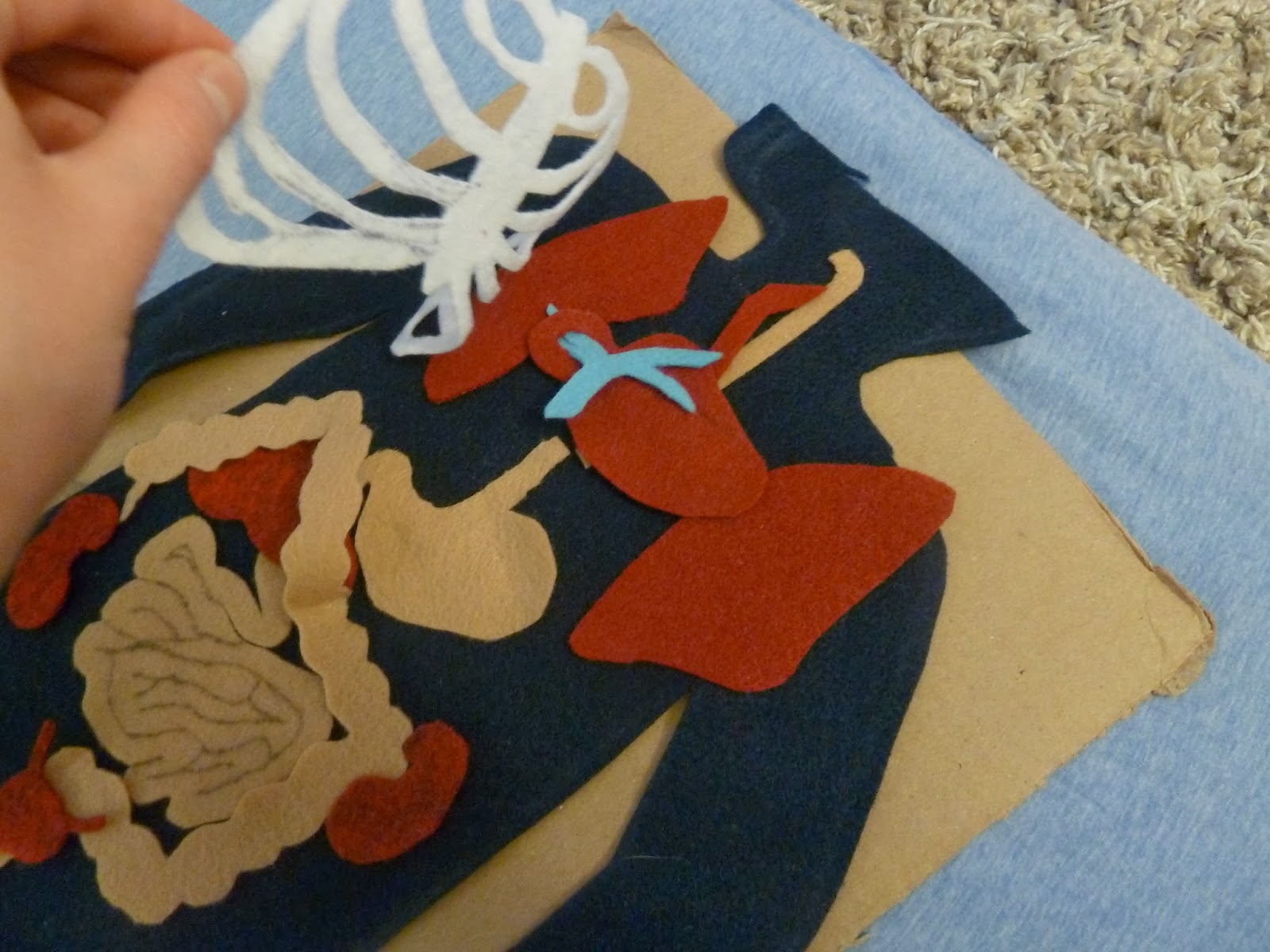 Standing At The Threshold: Felt Anatomy Set Patterns