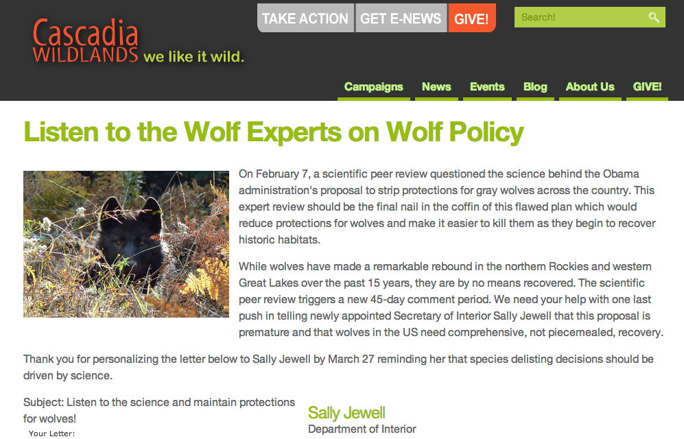 Eripe lupus wolf news listen to the wolf experts on wolf policy httphq org2lsalabso5868pdiaaction3commonpublicactionkey14583 publicscrutiny Images