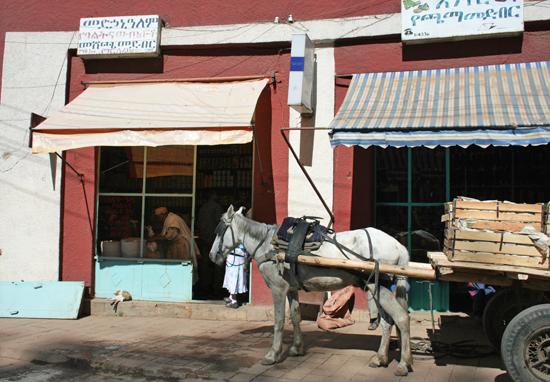 Safari Fusion blog | African Marsala | Village stores, Gondar Ethiopia | Photographer © Kellie Shearwood