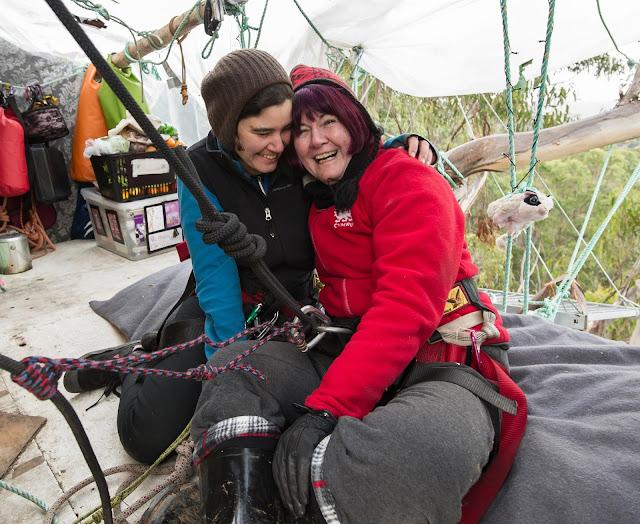 Miranda Gibson ha vissuto 449 giorni su un eucalipto per salvare la foresta della Tasmania