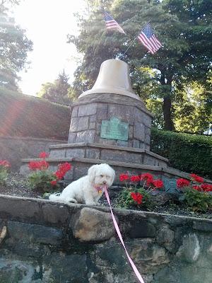 Phoebe celebrates our hard won freedom on Independenc Day