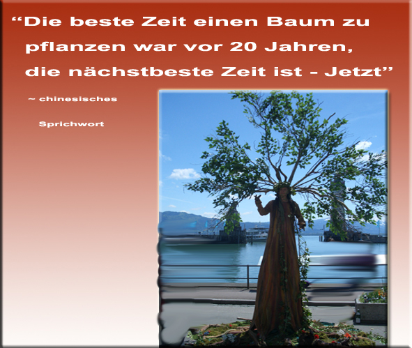 W rd ich einen baum pflanzen zitate freundschaftsspr che for Baum pflanzen