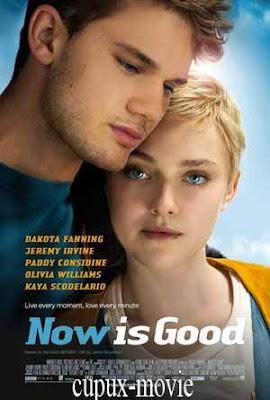 Now Is Good (2012) 720p Brrip cupux-movie.com