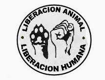 Di no al maltrato y la esclavitud animal