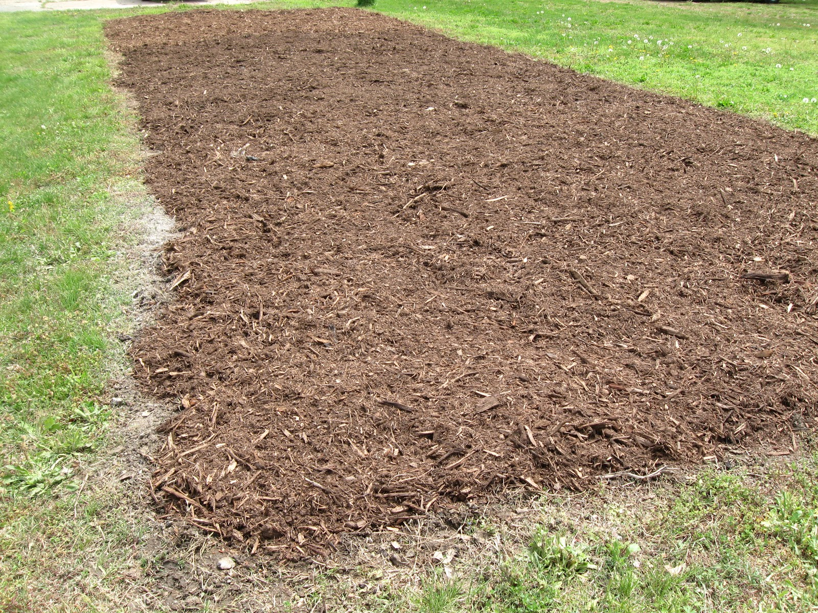 Kentucky fried garden garden tilled go and preparing for Garden topsoil
