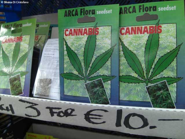 Cannabis al mercato dei fiori di Amsterdam
