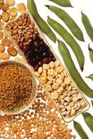 "<img src=""legumbres.jpg"" alt=""legumbres para dieta hiperproteica"">"