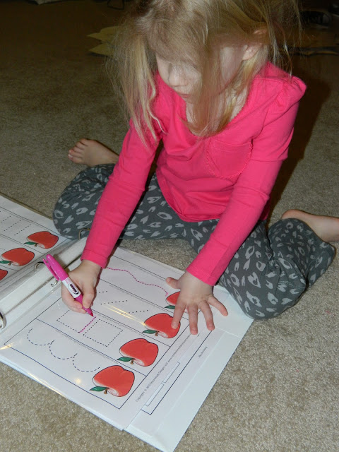 Sugarplum Cuties: Homeschool Activity Book