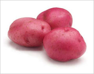how to start a rose cutting in a potato