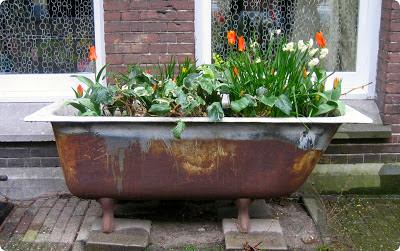 Bañera con flores en Amsterdam
