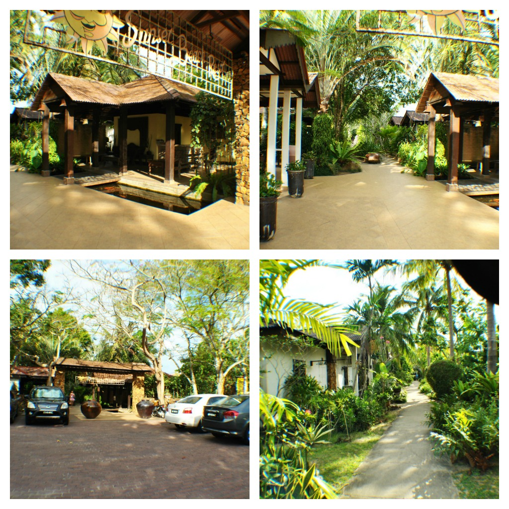 Kelley The Cat : Langkawi Accommodation : Sunset Beach Resort