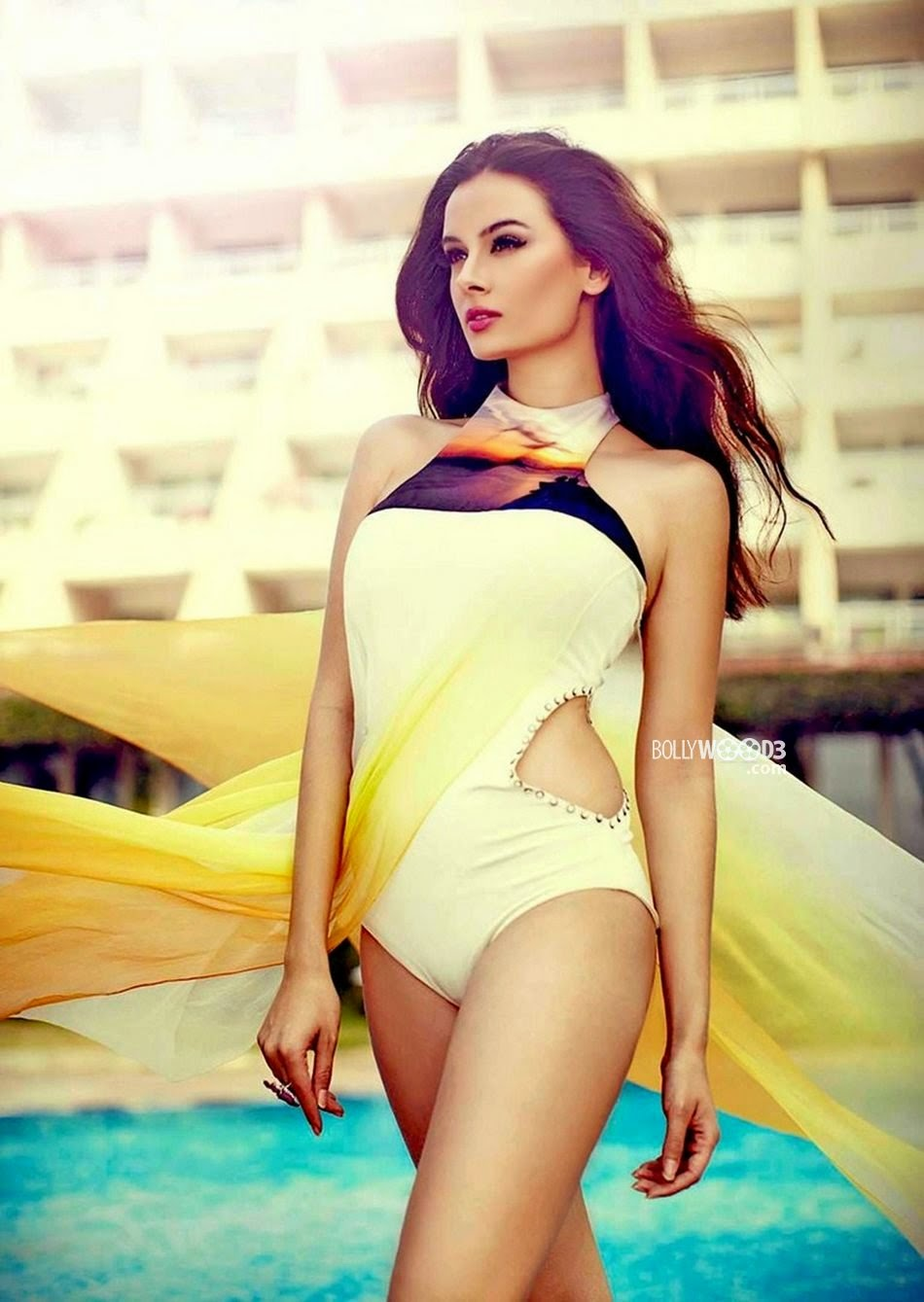 Evelyn Sharma hot swimsuit
