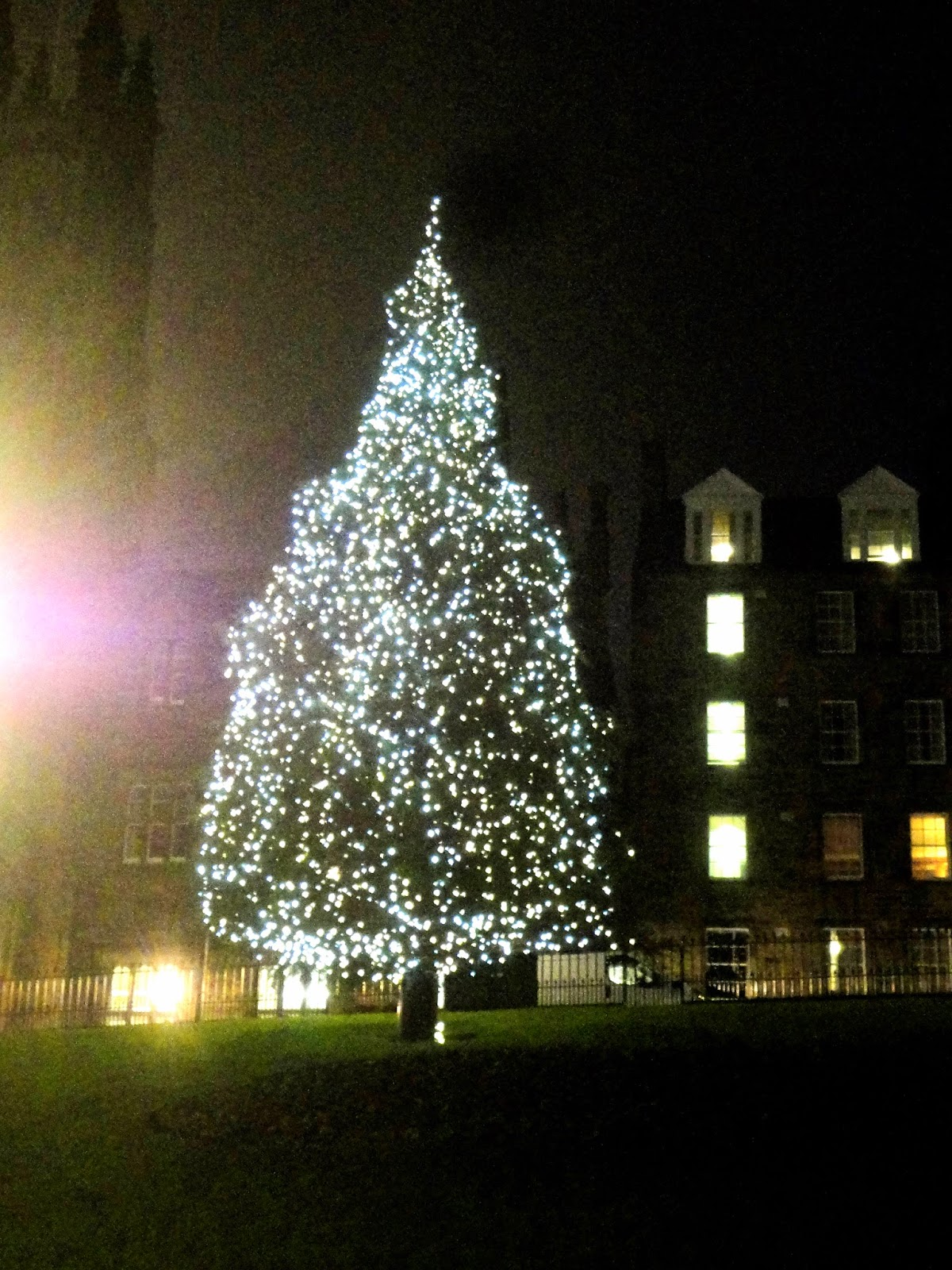 Christmas tree on the Mound, Edinburgh