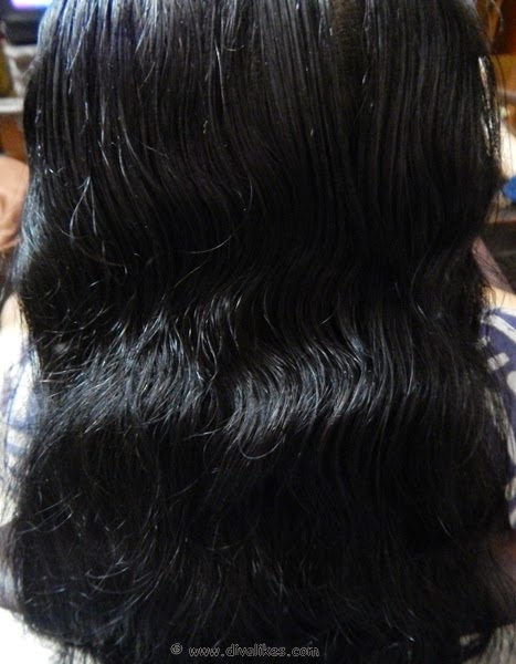 Ebony black hair color