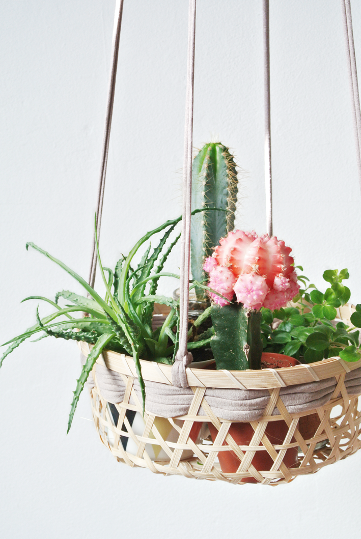 Decoraci n f cil diy cestas colgantes para plantas - Plantas colgantes ...