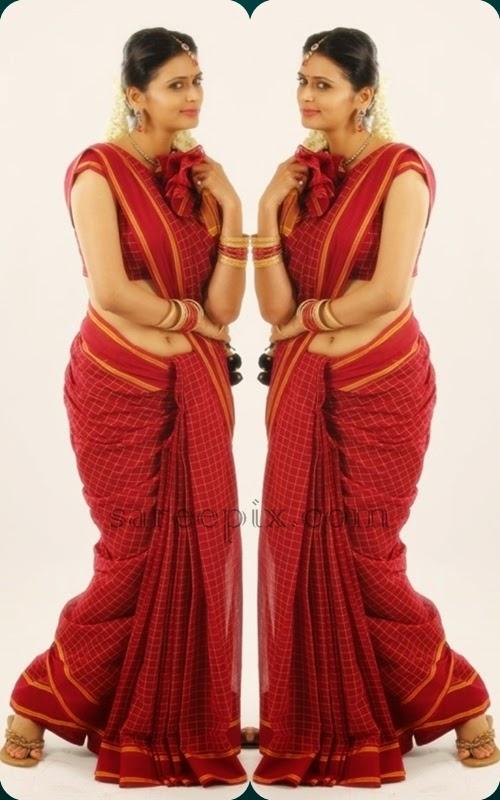 Model-Meenakshi-dixit-saree-tamil-movie