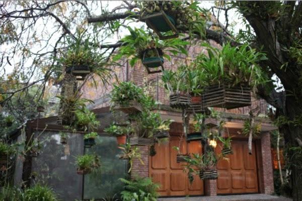 Un antiguo jard n donde las orqu deas cuelgan de los for Bazzel el jardin de los secretos