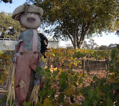 Guardian of the Vineyard, Peachy Canyon, 2013,  ©B. Radisavljevic