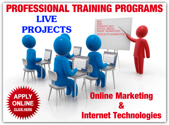 Professional SEO Training