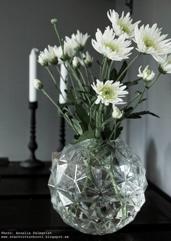 hemtex vas, vaser, rund vas, vasen, blomma, blommor, diamantform, diamantformer, diamanter, runt, rund, runda