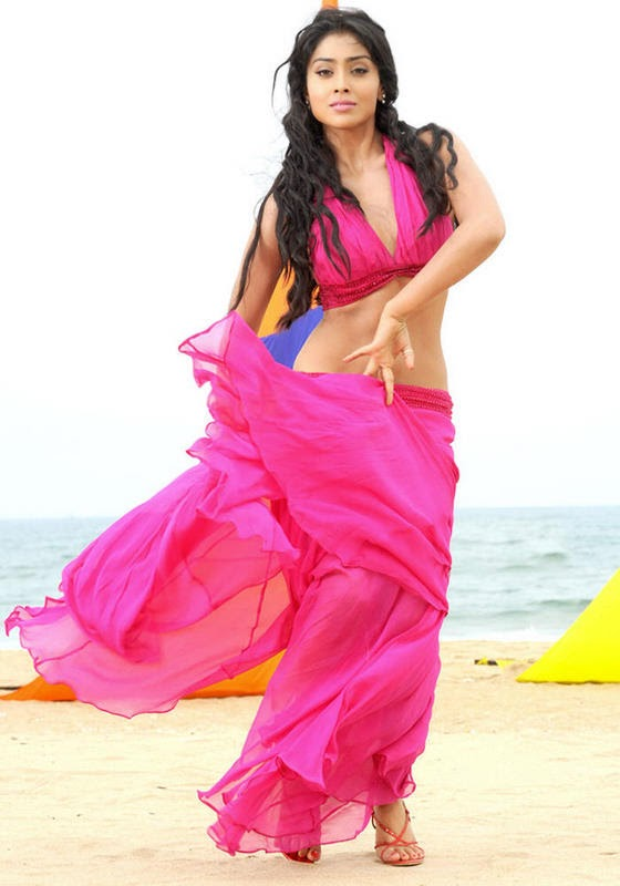 hot pics shriya saran