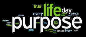 live with purpose, positive quotes, have a purpose