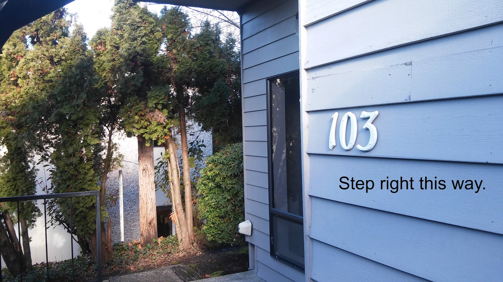 allied family therapy renton kent bellevue counselors