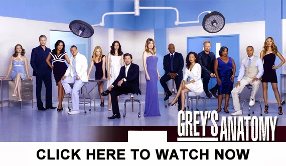 http://tvpassonline.blogspot.com/2013/11/watch-greys-anatomy-season-10-episode-8.html