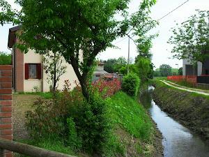 Il rio di via Manetti, Trebaseleghe (Pd).