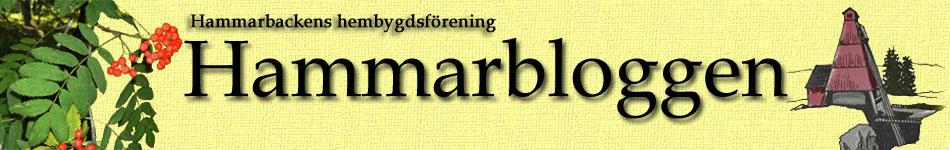 Hammarbloggen