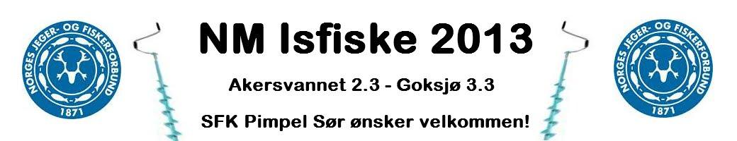 NM Isfiske 2013