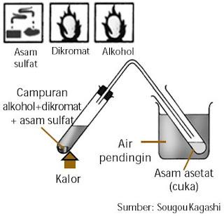 Percobaan pembuatan cuka di laboratorium