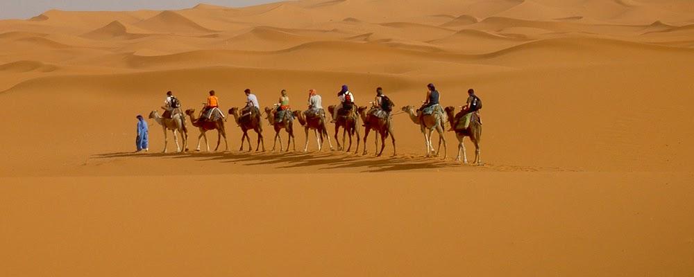 Agadir incentive,team building,honeymonns,golf,cruise,business travel,circuits desert 4x4