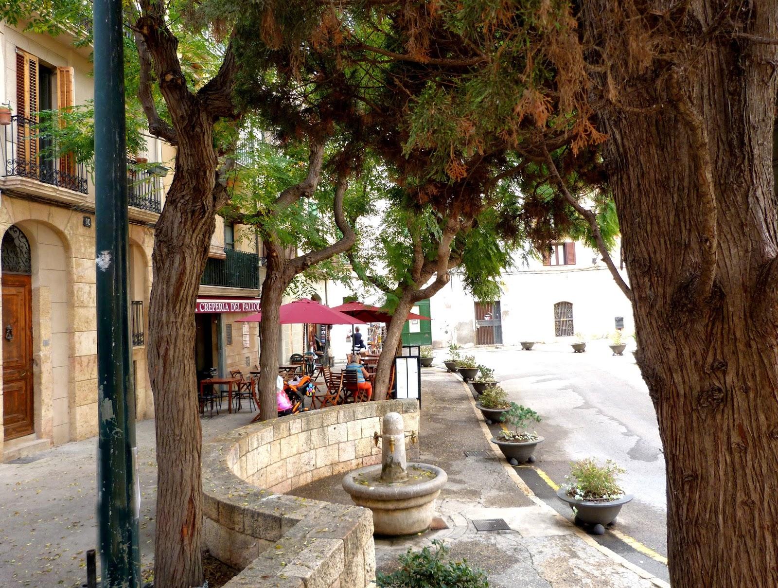 Tarragona-in-fuentes-Pallol