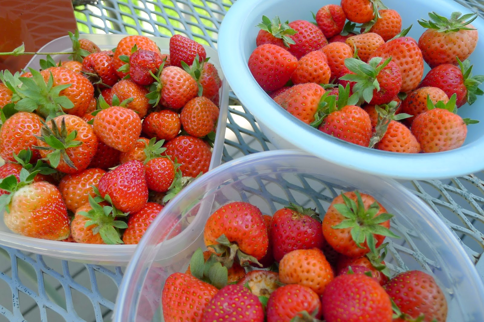 Strawberries, recipe ideas for strawberries