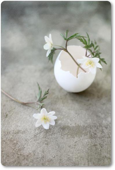 äggskalsvas, vitsippor, DIY ägg, påskpyssel