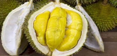 Manfaat buah durian bagi kesehatan dan kecantikan