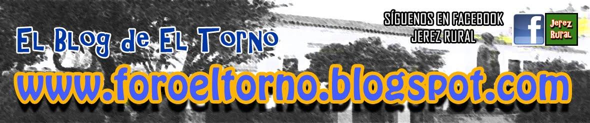 foroeltorno.blogspot.com