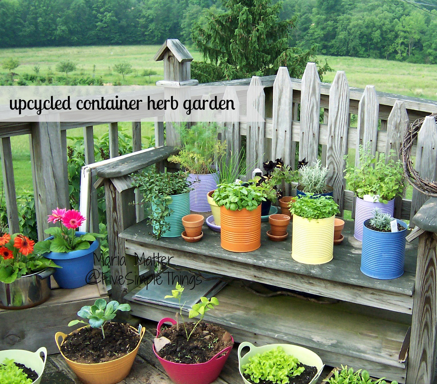 Five simple things upcycled container herb garden herbs 101 for Container herb garden