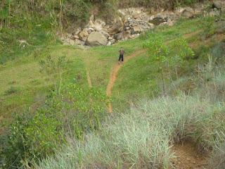 cerro quitasol
