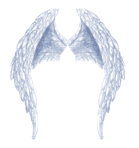 Angel Wings Png | New Calendar Template Site