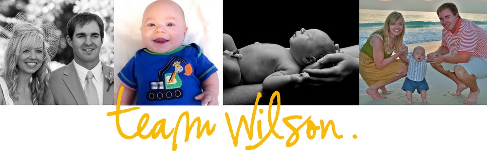 team wilson