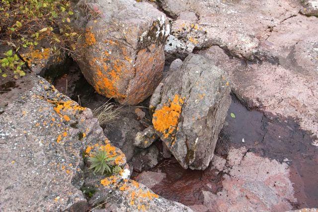 northern Minnesota rock bottom beauty