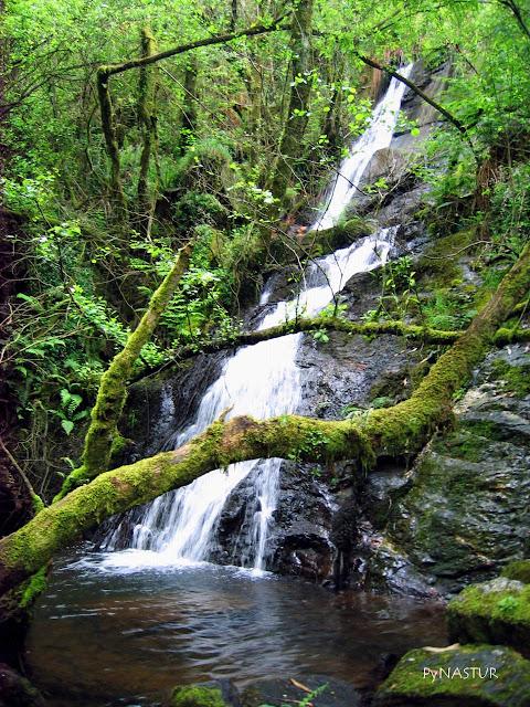 Cascada A Pena Do Encanto Asturias